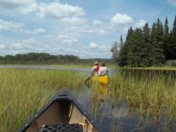 Flatwater Explore by Canoe: the Little Mississippi River Conservation Area
