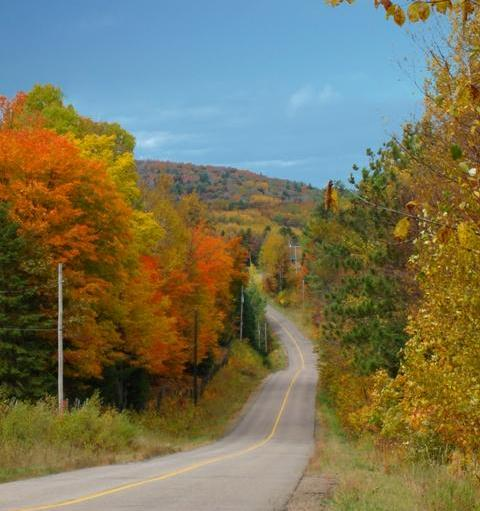 Historic Opeongo Line Road
